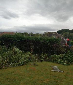 Garden services Torquay